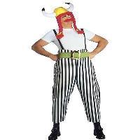 Asterix-Jungen Kostüm Lizenz-Verkleidung Kinder bunt Cod.319830