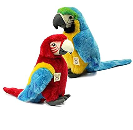 papagei kaufen
