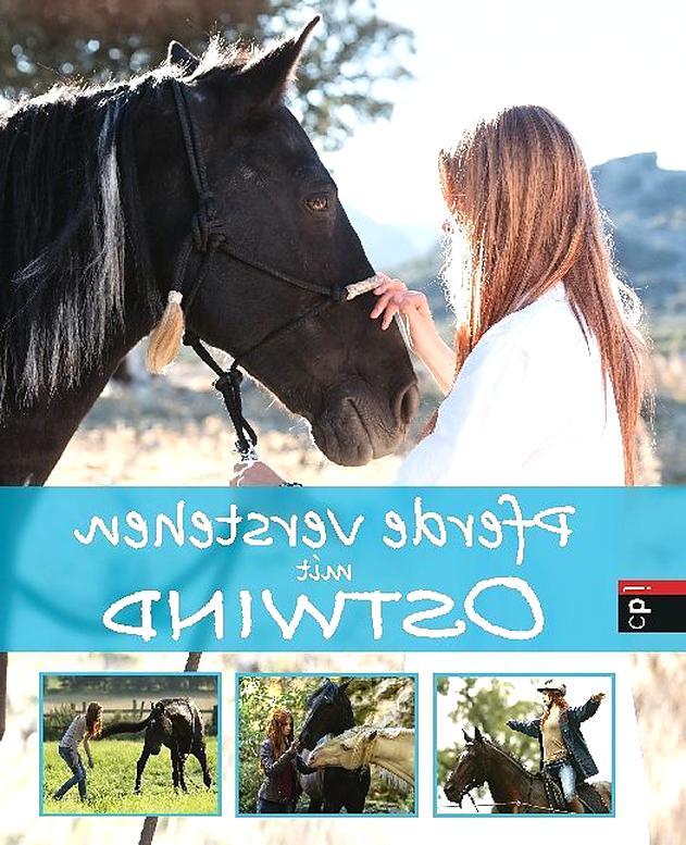 pferde verstehen gebraucht kaufen