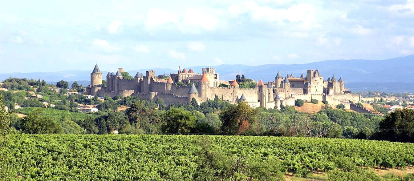 Carcassonne Kaufen