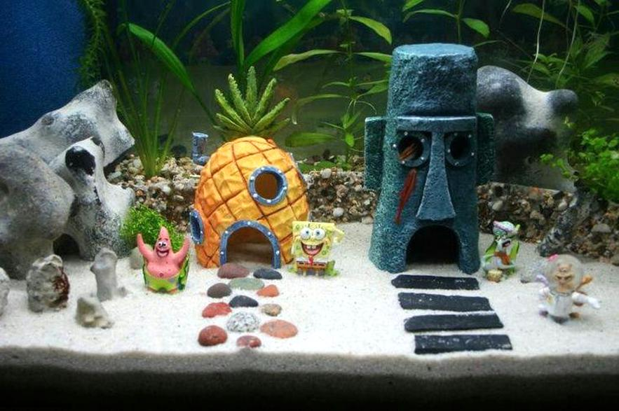Aquarium Dekoration Gebraucht Kaufen Nur 2 St Bis 60 Gunstiger