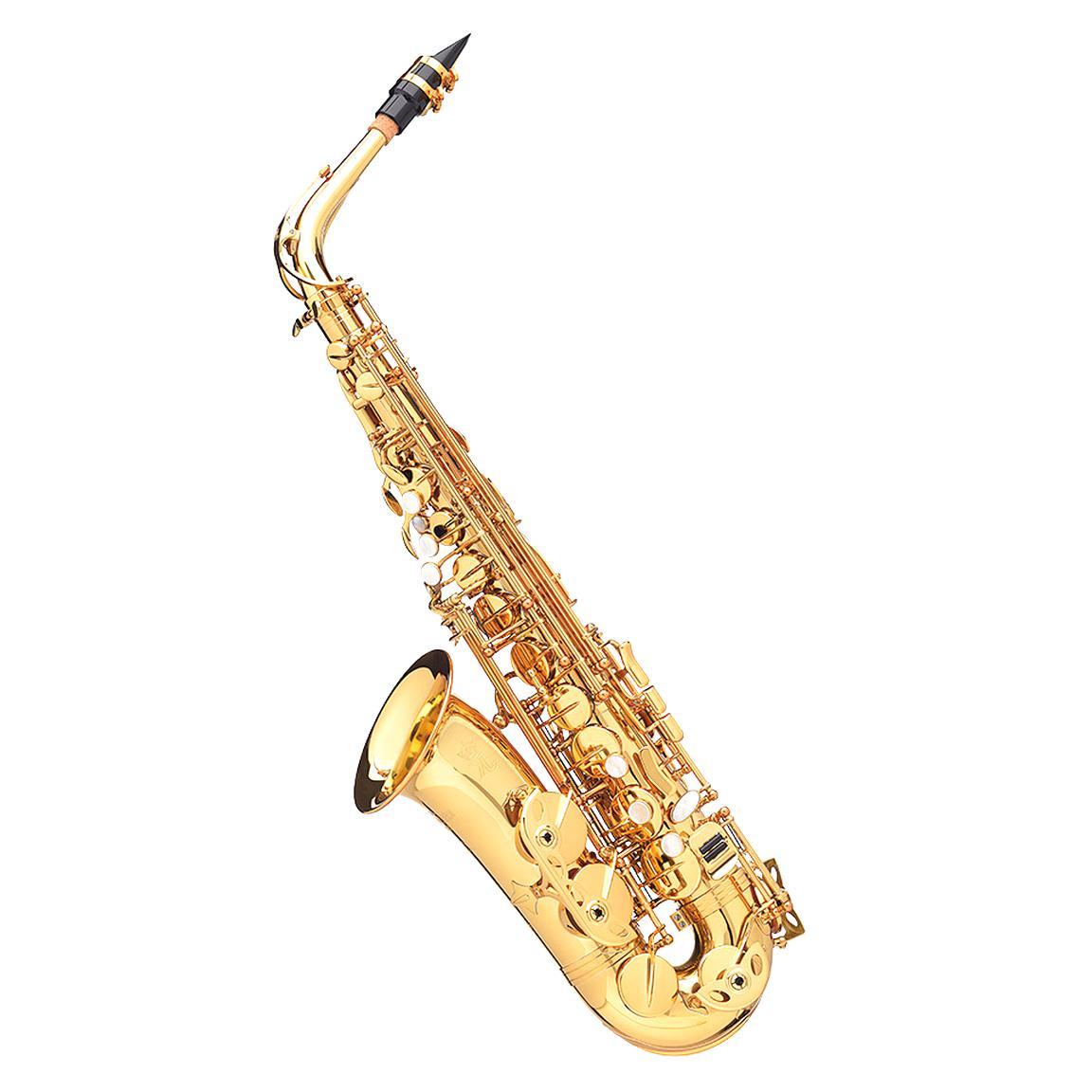 saxophon gebraucht kaufen